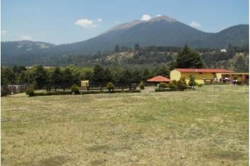 Foto de rancho en venta en tlatalchoya 1, santo tomas ajusco, tlalpan, distrito federal, 2667903 No. 02