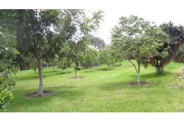 Foto principal de terreno habitacional en venta en toluquilla 2872624.