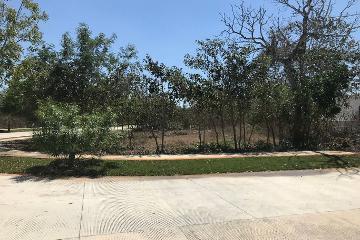 Foto de terreno habitacional en venta en  , yucatan, mérida, yucatán, 0 No. 02