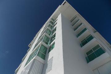Foto de departamento en renta en  , zona hotelera, benito juárez, quintana roo, 2884647 No. 01