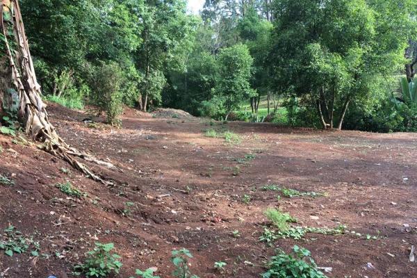 Foto de terreno habitacional en venta en ruta del bosque 0, avándaro, valle de bravo, méxico, 2708677 No. 05