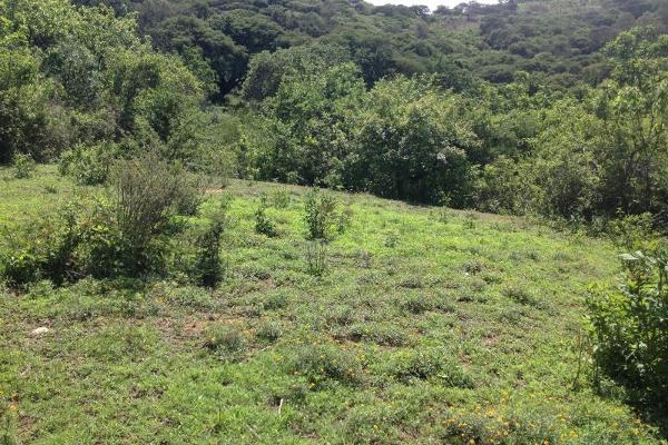 Foto de terreno comercial en venta en el refugio 0, ixtapan de la sal, ixtapan de la sal, méxico, 2663471 No. 02