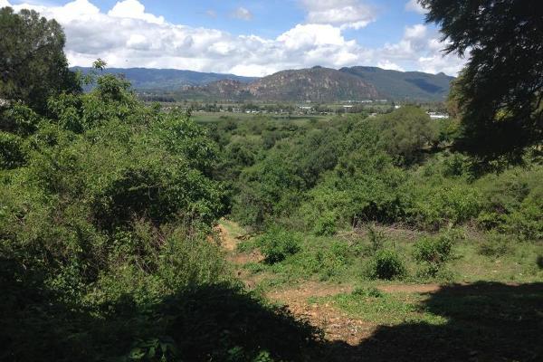 Foto de terreno comercial en venta en el refugio 0, ixtapan de la sal, ixtapan de la sal, méxico, 2663471 No. 03
