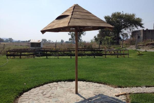 Foto de rancho en venta en pilcaya 0, pilcaya, pilcaya, guerrero, 2693114 No. 05