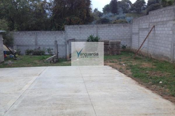 Foto de terreno comercial en venta en santiago oxtotitlan 0, villa guerrero, villa guerrero, méxico, 2656563 No. 03