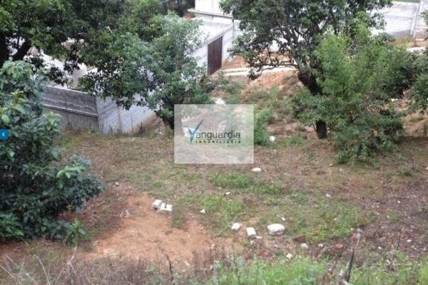 Foto de terreno comercial en venta en santiago oxtotitlan 0, villa guerrero, villa guerrero, méxico, 2656563 No. 06