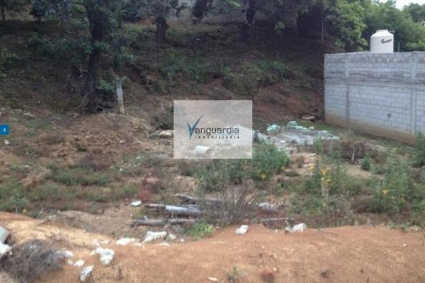 Foto de terreno comercial en venta en santiago oxtotitlan 0, villa guerrero, villa guerrero, méxico, 2656563 No. 07