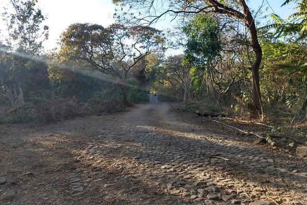 Foto de terreno habitacional en venta en 00 , el carrizal, villa de álvarez, colima, 20440312 No. 05