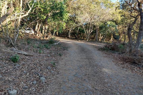 Foto de terreno habitacional en venta en 00 , el carrizal, villa de álvarez, colima, 20440312 No. 11