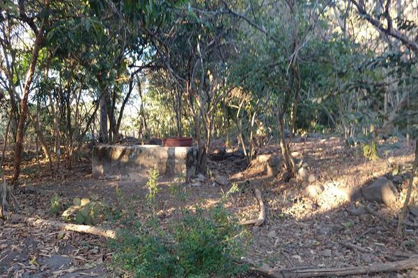 Foto de terreno habitacional en venta en 00 , el carrizal, villa de álvarez, colima, 20440312 No. 15