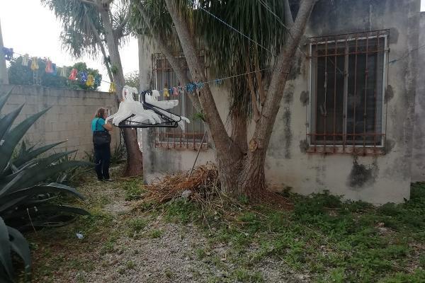 Foto de casa en venta en 000 , emiliano zapata ote, mérida, yucatán, 11425428 No. 12
