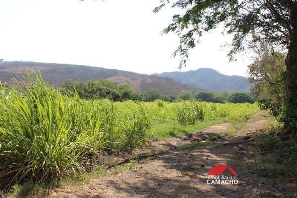 Foto de terreno habitacional en venta en 0000 0000, el remate, comala, colima, 3417861 No. 05
