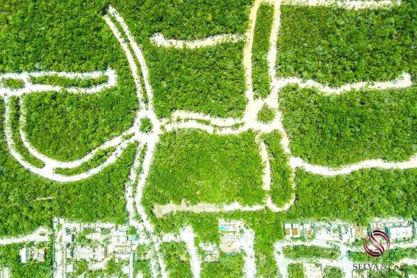 Foto de terreno habitacional en venta en 1 1, aldea zama, tulum, quintana roo, 0 No. 07
