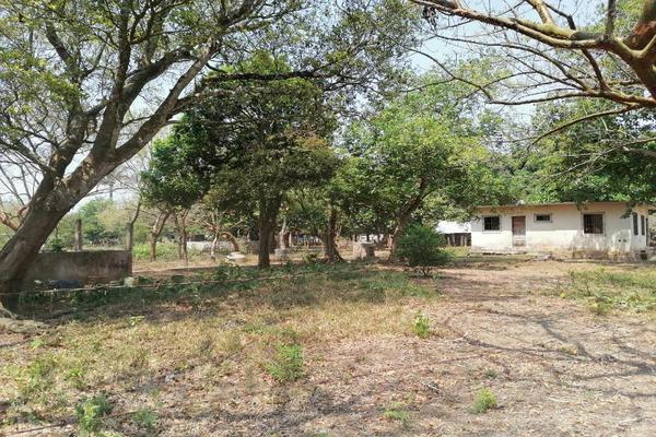 Foto de terreno habitacional en venta en 1 1, el tejar, medellín, veracruz de ignacio de la llave, 0 No. 02