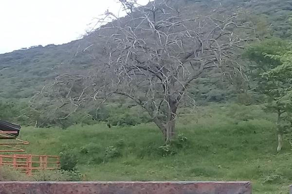 Foto de terreno comercial en venta en 1 1, tolimán, tolimán, querétaro, 6183366 No. 07