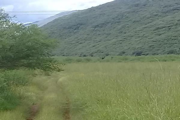 Foto de terreno comercial en venta en 1 1, tolimán, tolimán, querétaro, 6183366 No. 09