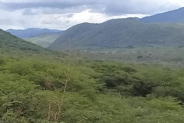 Foto de terreno comercial en venta en 1 1, tolimán, tolimán, querétaro, 6183366 No. 03