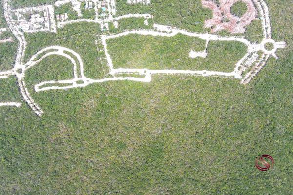 Foto de terreno habitacional en venta en 1 mls-dltu205-7, aldea zama, tulum, quintana roo, 13309724 No. 10