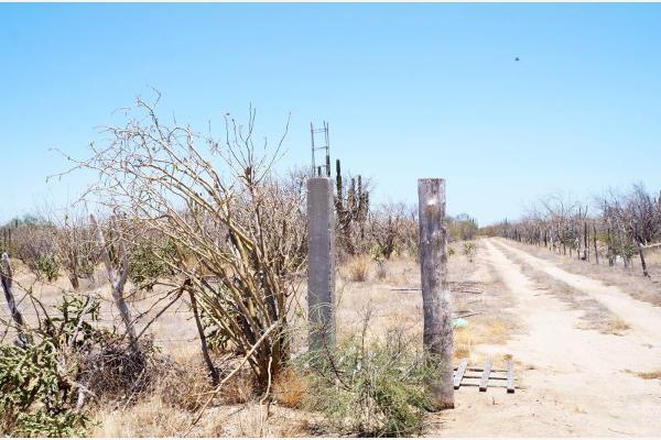 Foto de terreno habitacional en venta en sin nombre 1, olas altas, la paz, baja california sur, 2665340 No. 07