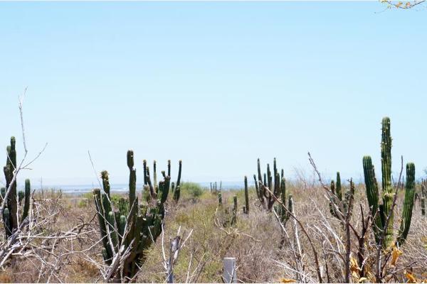 Foto de terreno habitacional en venta en sin nombre 1, olas altas, la paz, baja california sur, 2665340 No. 09
