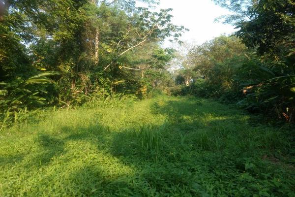 Foto de terreno comercial en venta en . 1, sección 40, cárdenas, tabasco, 5413976 No. 02