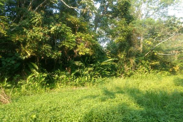 Foto de terreno comercial en venta en . 1, sección 40, cárdenas, tabasco, 5413976 No. 03