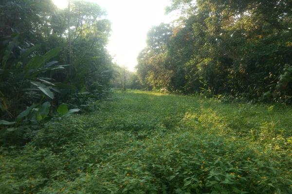 Foto de terreno comercial en venta en . 1, sección 40, cárdenas, tabasco, 5414338 No. 01