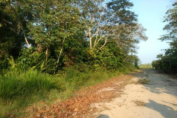 Foto de terreno comercial en venta en . 1, sección 40, cárdenas, tabasco, 5414338 No. 04