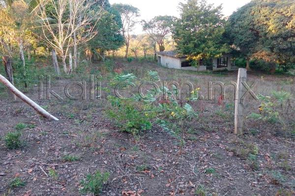 Foto de terreno habitacional en venta en 10 de mayo , cruz naranjos, tuxpan, veracruz de ignacio de la llave, 5917445 No. 03