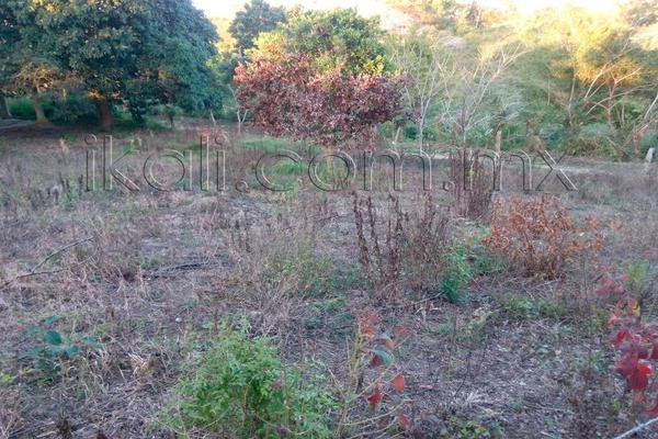 Foto de terreno habitacional en venta en 10 de mayo , cruz naranjos, tuxpan, veracruz de ignacio de la llave, 5917445 No. 04