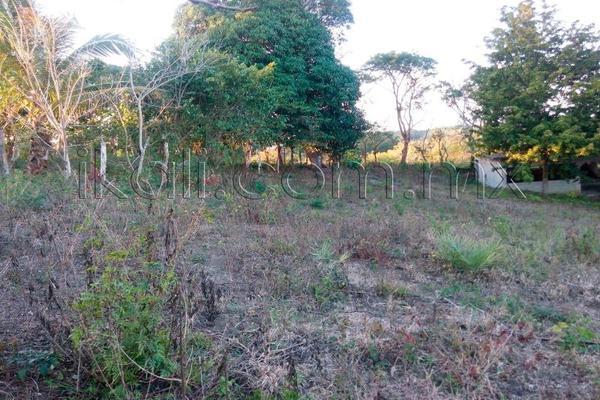 Foto de terreno habitacional en venta en 10 de mayo , cruz naranjos, tuxpan, veracruz de ignacio de la llave, 5917445 No. 05
