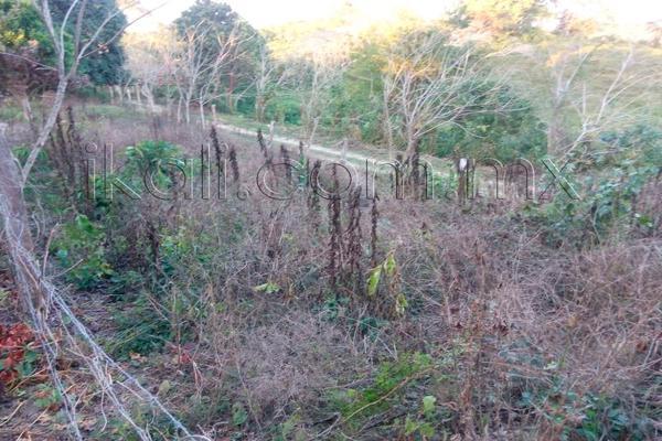 Foto de terreno habitacional en venta en 10 de mayo , cruz naranjos, tuxpan, veracruz de ignacio de la llave, 5917445 No. 06