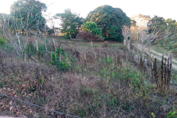 Foto de terreno habitacional en venta en 10 de mayo , cruz naranjos, tuxpan, veracruz de ignacio de la llave, 5917445 No. 07