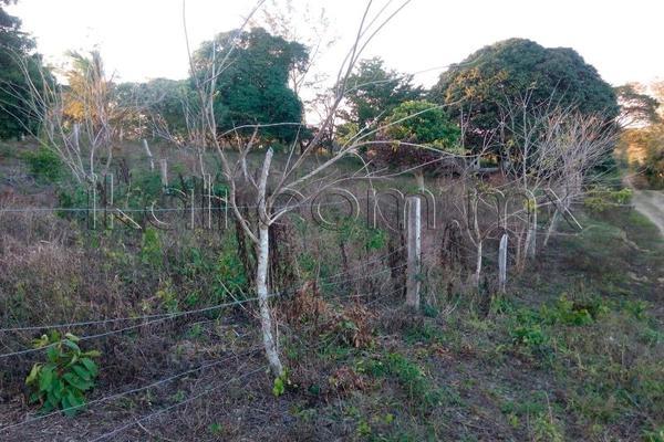 Foto de terreno habitacional en venta en 10 de mayo , cruz naranjos, tuxpan, veracruz de ignacio de la llave, 5917445 No. 08