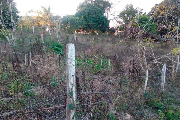 Foto de terreno habitacional en venta en 10 de mayo , cruz naranjos, tuxpan, veracruz de ignacio de la llave, 5917445 No. 09