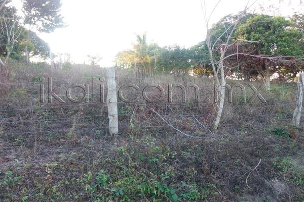 Foto de terreno habitacional en venta en 10 de mayo , cruz naranjos, tuxpan, veracruz de ignacio de la llave, 5917445 No. 10