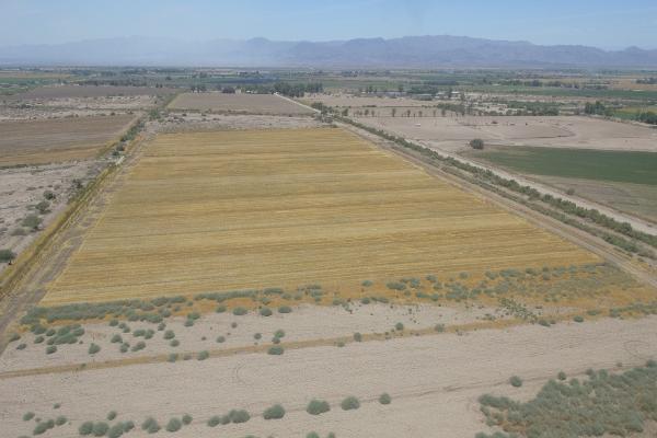 Foto de terreno habitacional en venta en  , 10 de mayo, mexicali, baja california, 12813455 No. 06