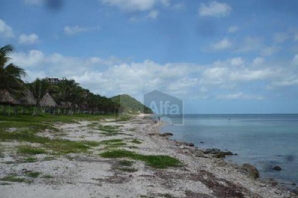 Foto de terreno habitacional en venta en 10 , lerma, campeche, campeche, 10029316 No. 04