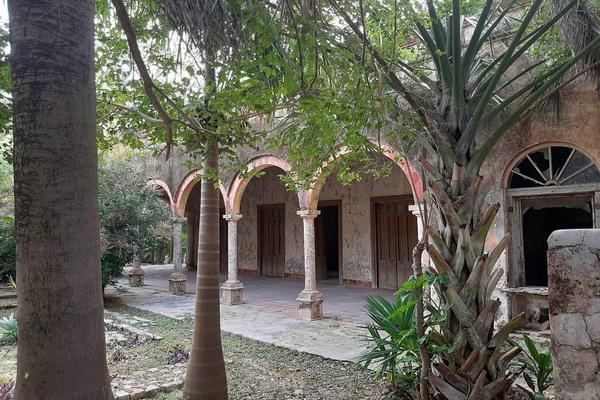 Foto de rancho en venta en 110 , hacienda mulsay, mérida, yucatán, 19647522 No. 06