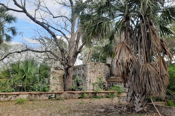 Foto de rancho en venta en 110 , hacienda mulsay, mérida, yucatán, 19647522 No. 09