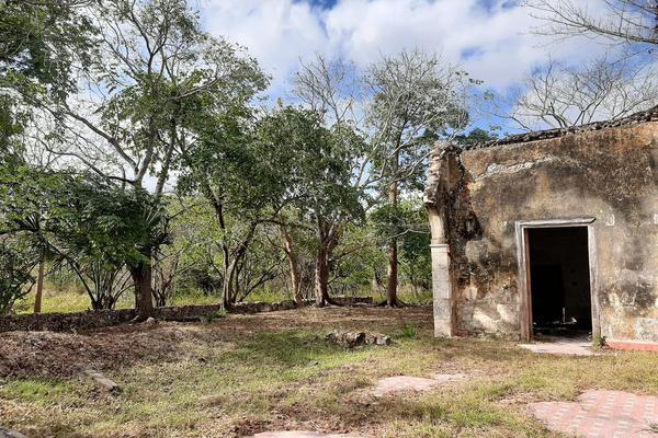 Foto de rancho en venta en 110 , hacienda mulsay, mérida, yucatán, 19647522 No. 10