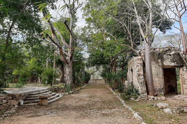 Foto de rancho en venta en 110 , hacienda mulsay, mérida, yucatán, 19647522 No. 11