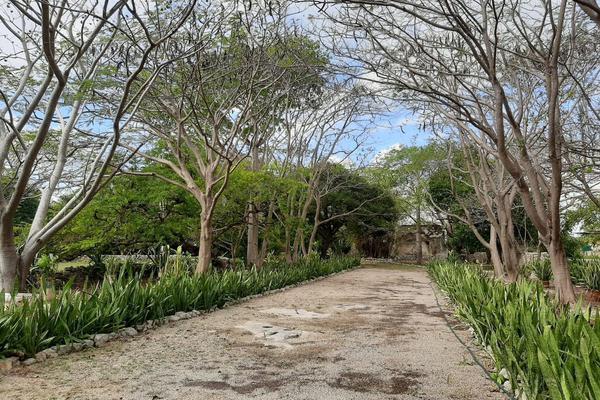 Foto de rancho en venta en 110 , hacienda mulsay, mérida, yucatán, 19647522 No. 12