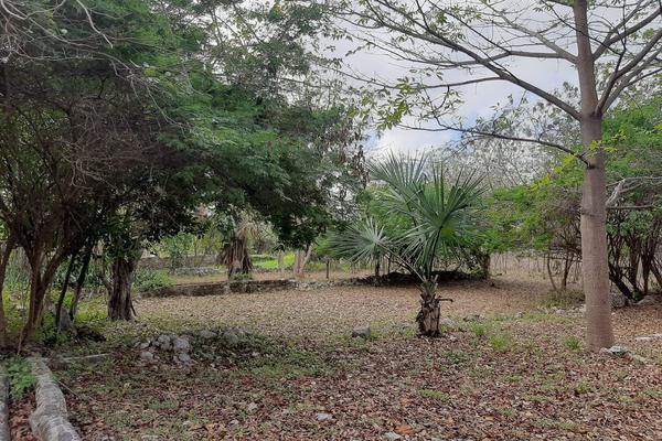 Foto de rancho en venta en 110 , hacienda mulsay, mérida, yucatán, 19647522 No. 20