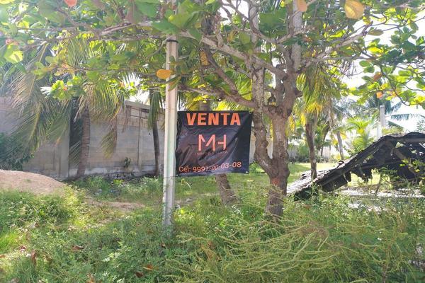 Foto de terreno habitacional en venta en 12 , celestun, celestún, yucatán, 9945574 No. 01