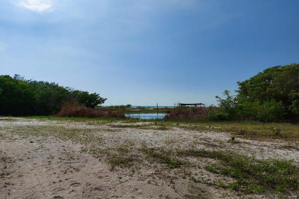 Foto de terreno habitacional en venta en 12 , celestun, celestún, yucatán, 9945574 No. 03