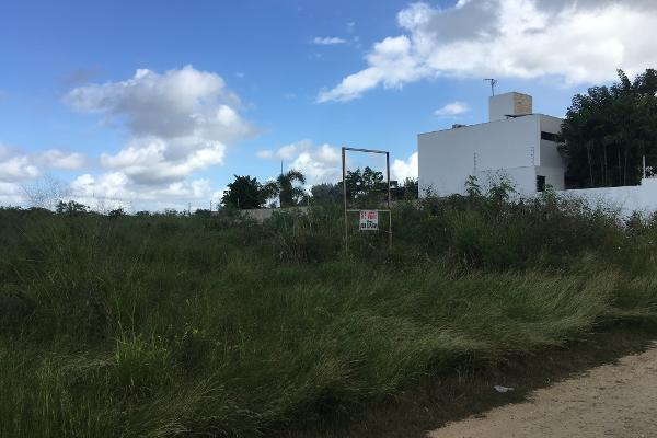 Foto de terreno industrial en venta en 13 79, cholul, mérida, yucatán, 10002968 No. 02