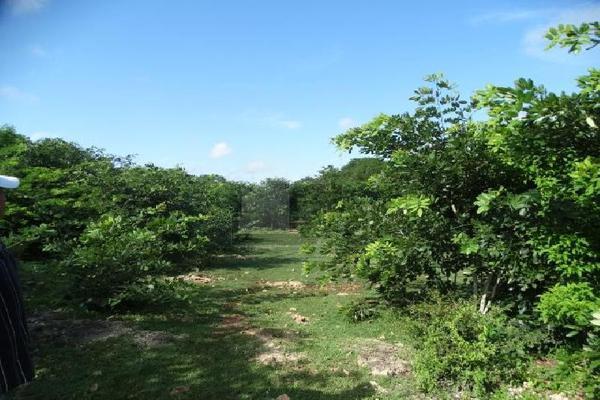 Foto de terreno habitacional en venta en 13 , sitpach, mérida, yucatán, 9129633 No. 20