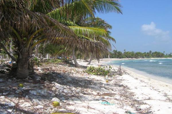 Foto de terreno comercial en venta en costera norte 15, mahahual, othón p. blanco, quintana roo, 2668837 No. 04