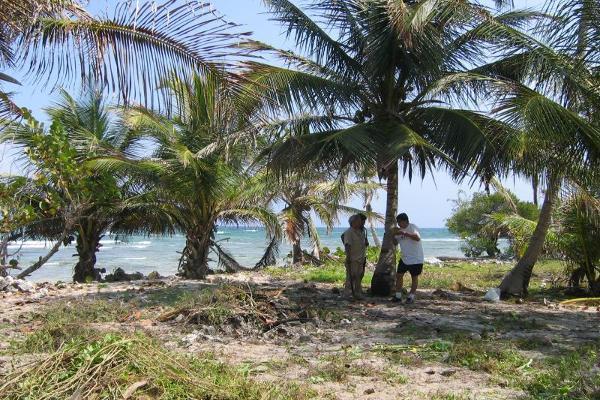 Foto de terreno comercial en venta en costera norte 15, mahahual, othón p. blanco, quintana roo, 2668837 No. 06